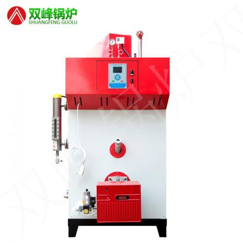 燃油(气)蒸汽发生器300公斤